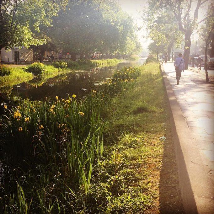 Mornin Dublin, ya stunner